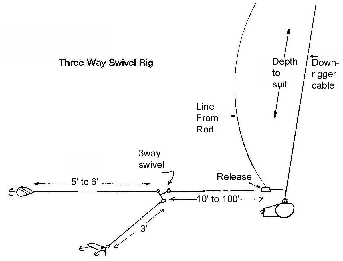 Three way swivel rig michigan sportsman for Salmon fishing rigs