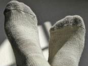 Merino Wool Socks by Business Insider