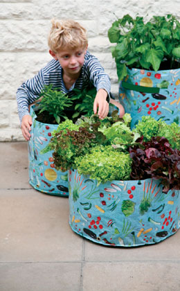 Tips for Getting Children Involved In Vegetable Gardening