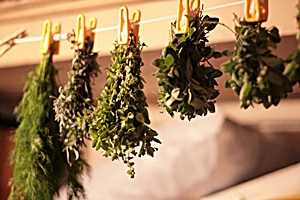 How To Dry and Store Fresh Herbs