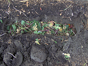 direct composting