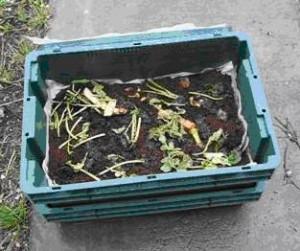 Worm Composting Bin