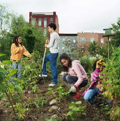Get Involved In Community Gardening