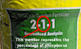 The Middle Number Represents The Percentage of Phosphorus