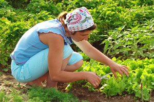 5 Ways To Improve Your Gardening Skills and Knowledge