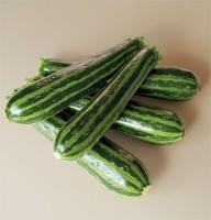 greentigerzucchini