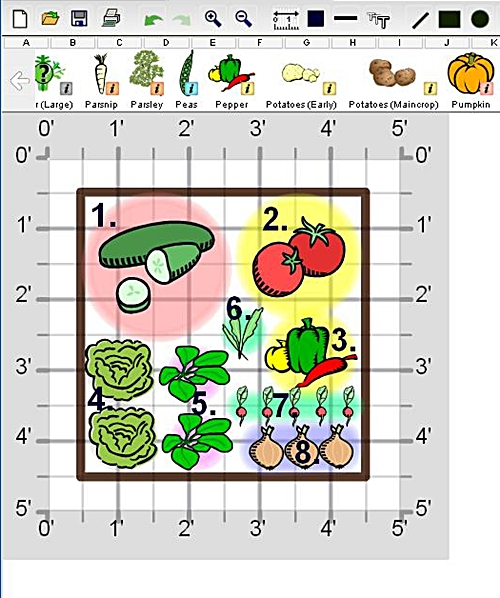 Create a fresh salad garden veggie gardener for Small vegetable garden layout plans