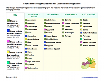 Short-Term Storage Guide for Fresh Vegetables