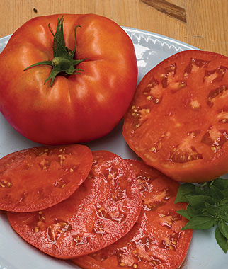 The 10 Best Slicing Tomatoes