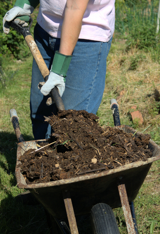 Amending the Garden Soil In Early Spring
