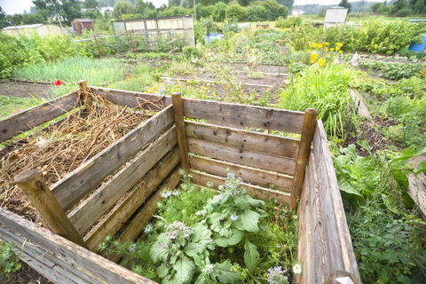 Rev Up Your Compost With a Compost Activator