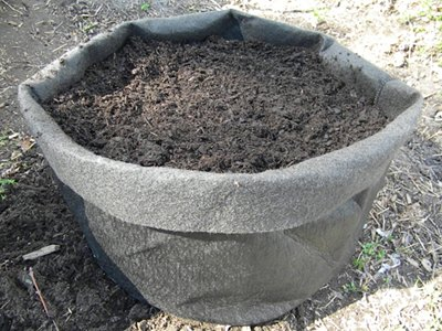 How to Plant Potatoes In a Potato Grow Bag