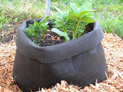 Gardener's Supply Potato Grow Bag Review