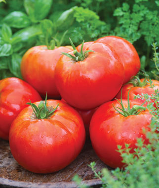 5 Awesome New Vegetable Varieties for 2012
