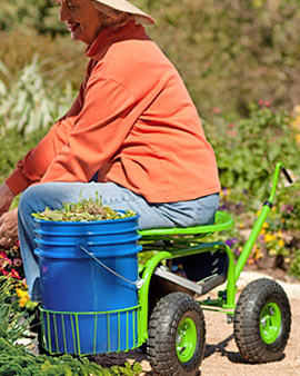 Vegetable Gardening With Disabilities Veggie Gardener