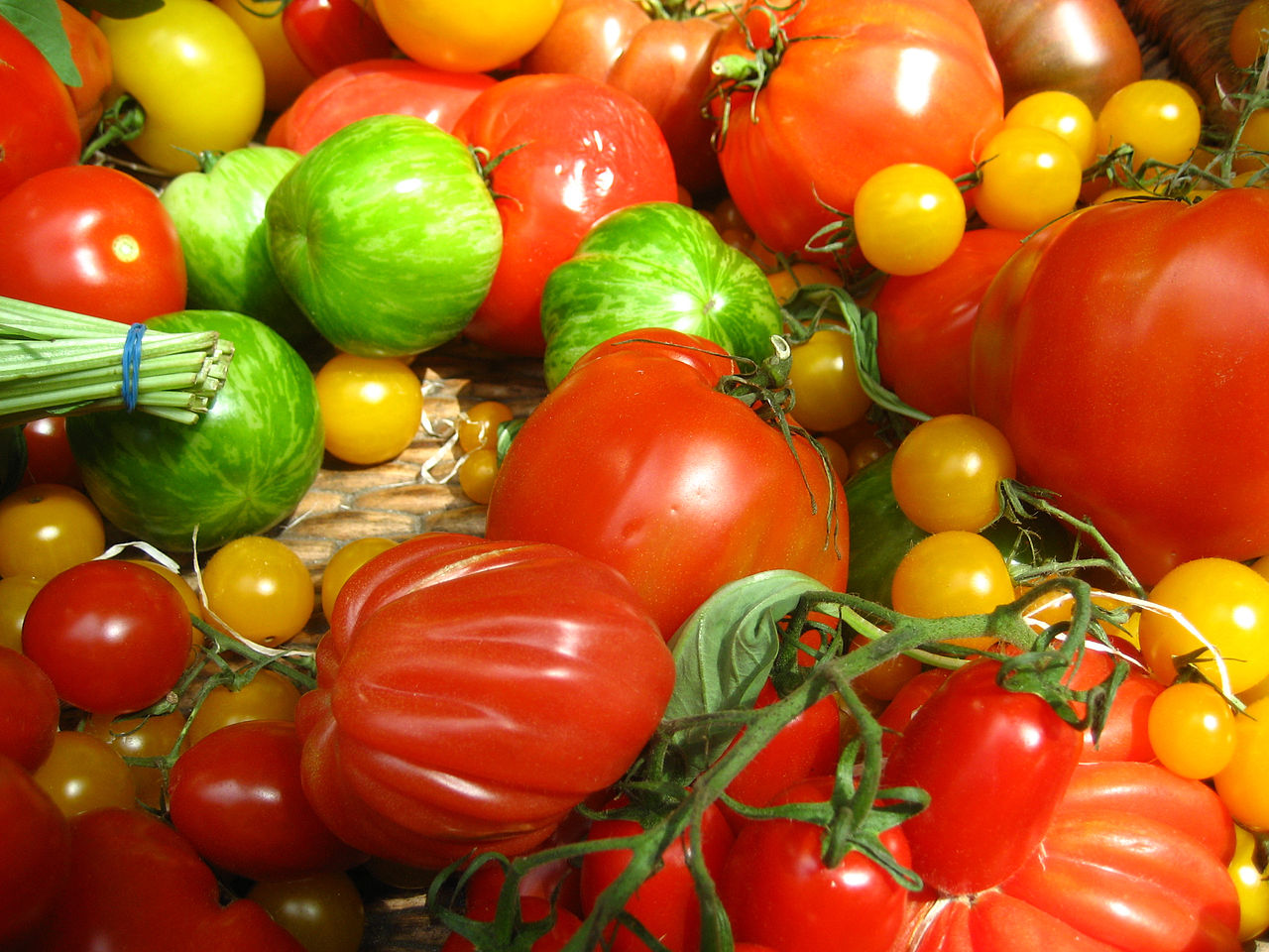 all types of tomatoes