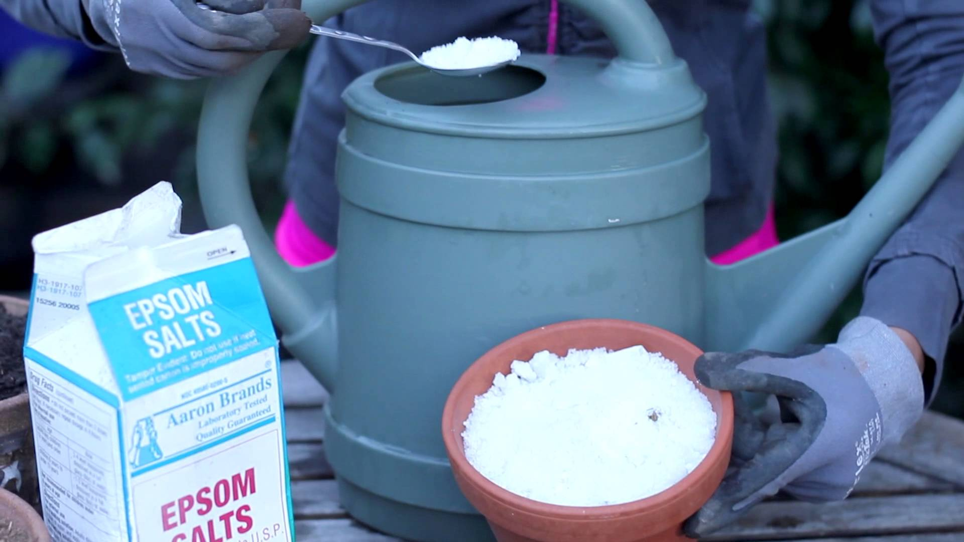 epsom salt in watering can