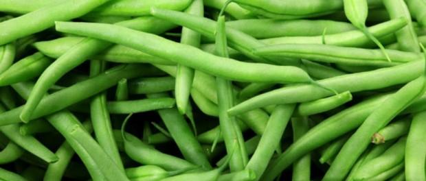 Green Beans by Bowwow Times