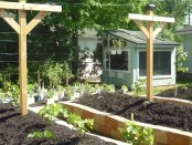 Raised Beds by Permies