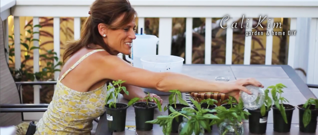 Check Out These New CaliKim Videos Veggie Gardener