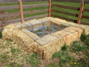 Cold Frame by Two Barn Farm