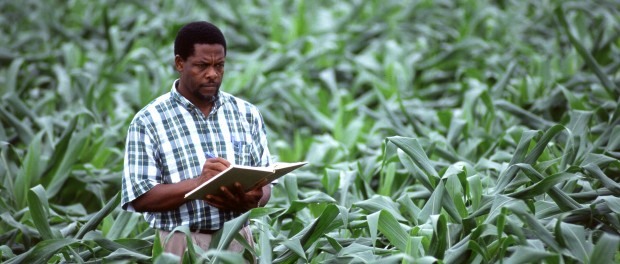 grant funding for farming and food systems