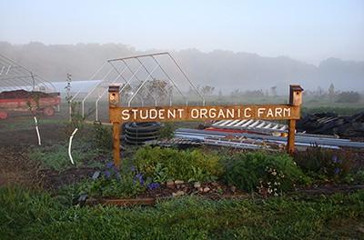 MSU Student Organic Farm