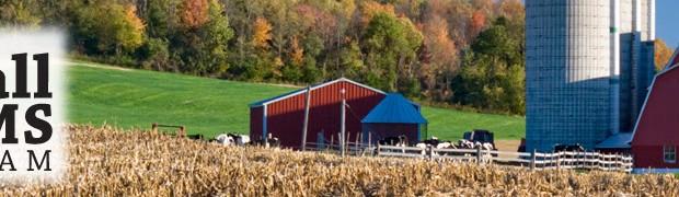 Online Courses Farming