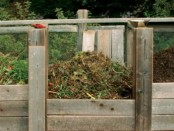 Compost photo by Fine Gardening