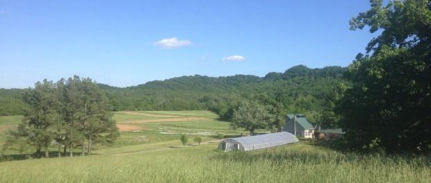 Kentucky Organic Farm