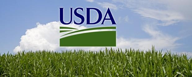 USDA Grants