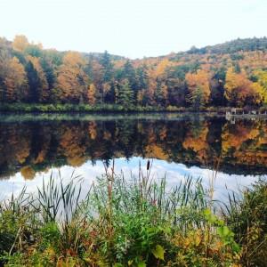 Organic Farm Fellowship Lake