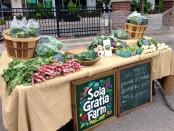 Economics of Local Food