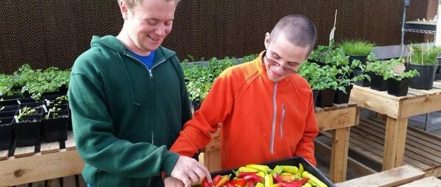 Trellis Center Farm Manager Job
