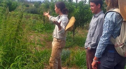 Farm Education Apprenticeship