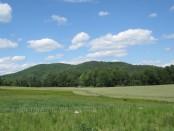Finding Farmland