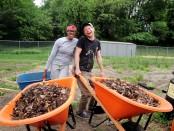 farm and compost internship