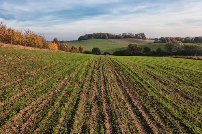 farming problems essay
