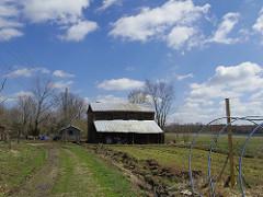 Bottle Tree Farm in Virginia