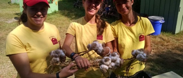 farming apprenticeship in Connecticut