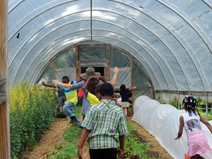 Urban Agriculture Fellowships