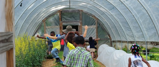 Urban Agriculture Fellowships