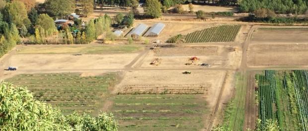 Oregon Farm Aerial View