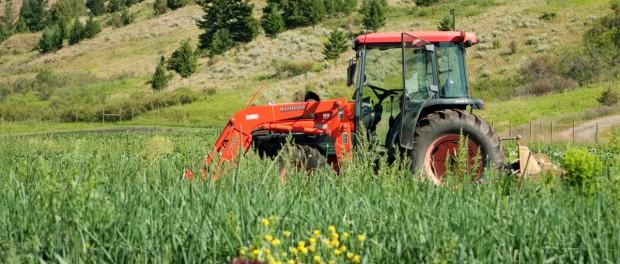Farming in Montana