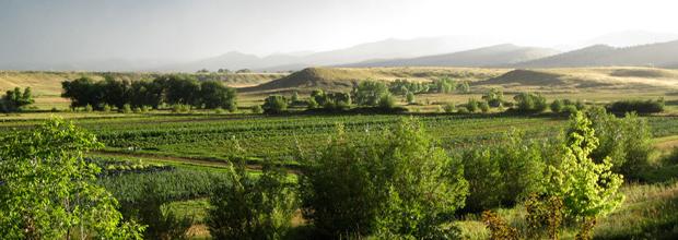 Pachamama Farm Colorado