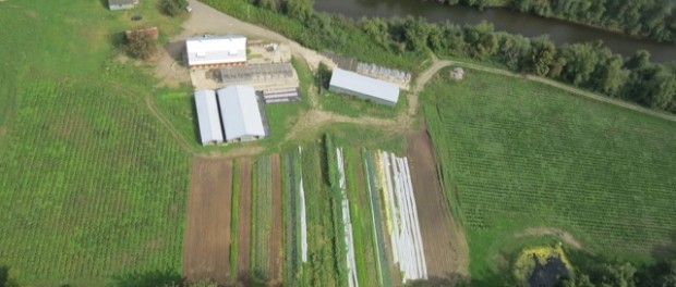 organic farm aerial