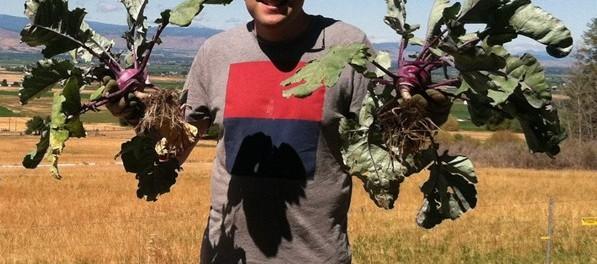 Farming Internship in Washington