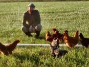 ShireFolk Farm