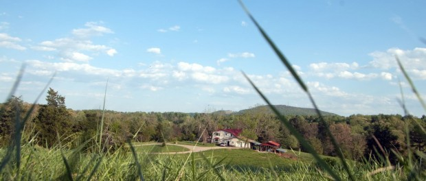 pasture based farm