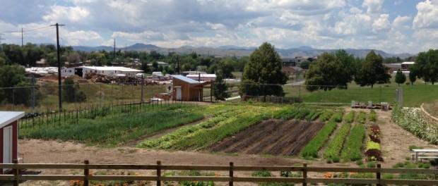Urban Agriculture Colorado